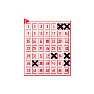 Spielfeld mit den angekreuzten Zahlen 6-7-33-35-37-42