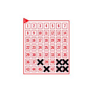 Spielfeld mit den angekreuzten Zahlen 38-41-42-46-48-49