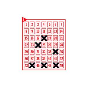 Spielfeld mit den angekreuzten Zahlen 18-24-34-44-46-48